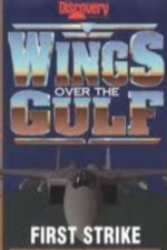 2728277_Wings_Over_the_Gulf_Vol_1_First_Strike_1996.jpg