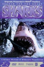 2744615_Search_For_The_Great_Sharks.jpg