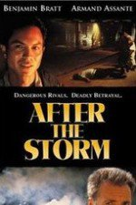 2790537_After_the_Storm.jpg
