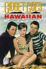 73265_Gidget_Goes_Hawaiian_1961.jpg